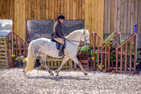 Class 22 NPS Peasedown Stud M&M Intermediate Ridden Gallery (3 of 27)