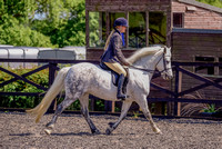 Class 22 NPS Peasedown Stud M&M Intermediate Ridden Gallery (17 of 27)
