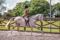 Class 24 Ridden Part Bred & over - Height Connemara, Stallion, Mare or Gelding (8 of 30)