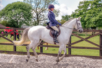 Class 24 Ridden Part Bred & over - Height Connemara, Stallion, Mare or Gelding (9 of 30)