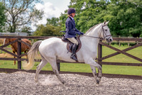 Class 24 Ridden Part Bred & over - Height Connemara, Stallion, Mare or Gelding (10 of 30)