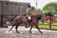 Class 24 Ridden Part Bred & over - Height Connemara, Stallion, Mare or Gelding (11 of 30)