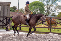 Class 24 Ridden Part Bred & over - Height Connemara, Stallion, Mare or Gelding (12 of 30)