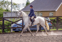 Class 24 Ridden Part Bred & over - Height Connemara, Stallion, Mare or Gelding (14 of 30)