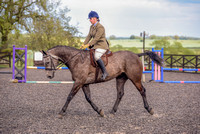Class 24 Ridden Part Bred & over - Height Connemara, Stallion, Mare or Gelding (19 of 30)