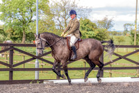 Class 24 Ridden Part Bred & over - Height Connemara, Stallion, Mare or Gelding (20 of 30)