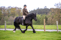 Class A - Dales Pony Society Ridden Pony of the Year